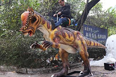 疯狂动物园三头龙
